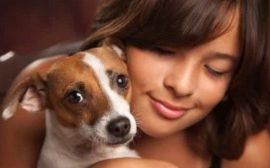 antiparazitika pro psa